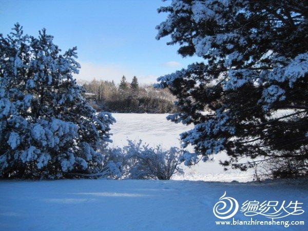 2011多伦多第一场大雪 (24).jpg
