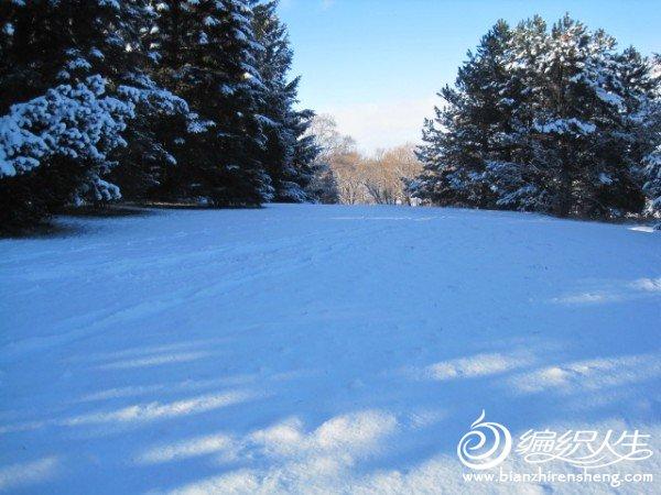 2011多伦多第一场大雪 (27).jpg