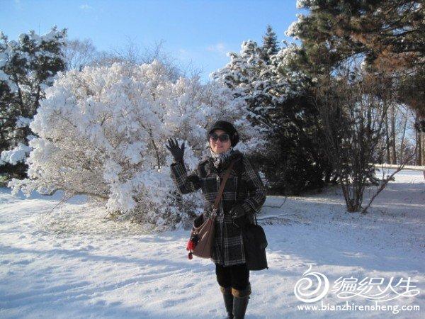2011多伦多第一场大雪 (29).jpg