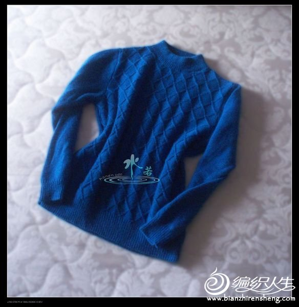 2011010蓝.jpg