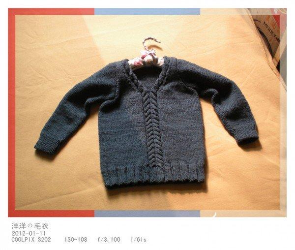 洋洋毛衣2.jpg