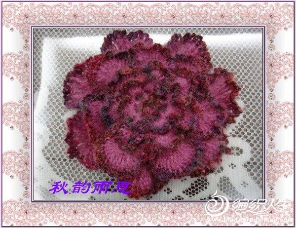 nEO_IMG_DSC04761.jpg