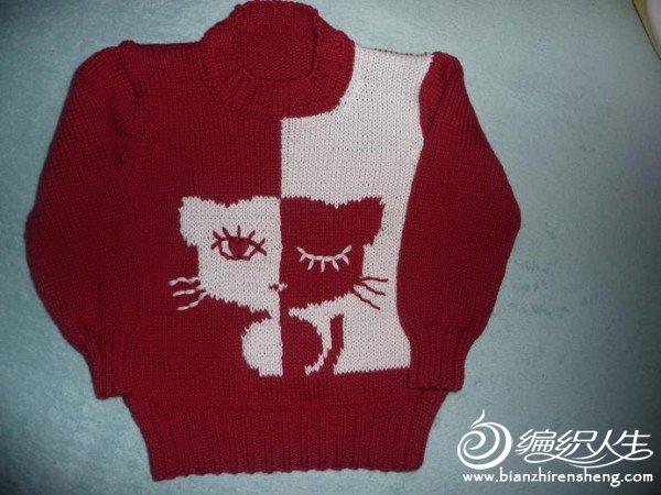 猫咪P1050698.JPG