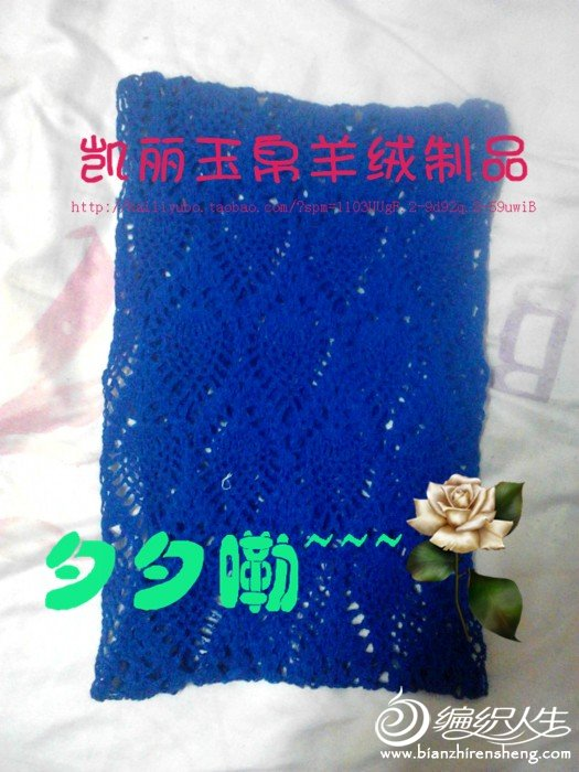 img_20120128_215558_副本.jpg