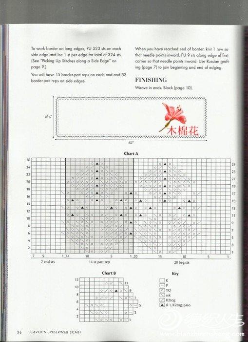 照片27_副本.jpg