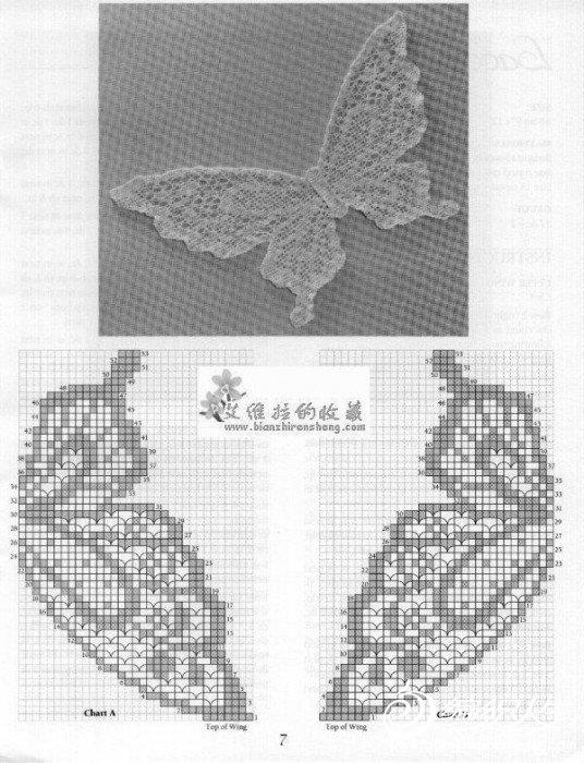 蝴蝶2图解.jpg