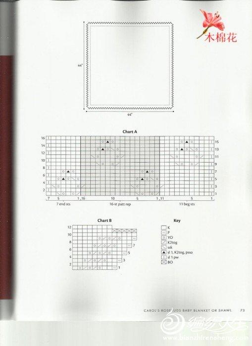 照片64_副本.jpg