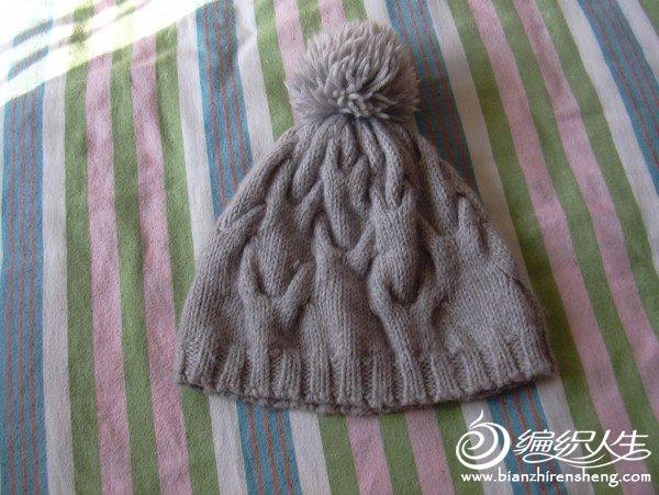 我的灰色麻花帽子.JPG