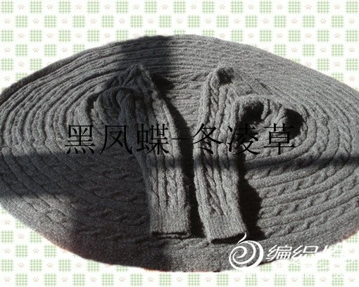 黑凤蝶全景.jpg
