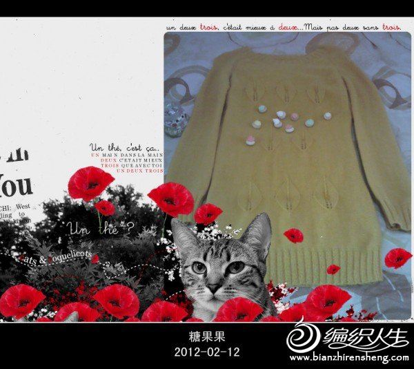 IMG_20120212_123054_副本.jpg