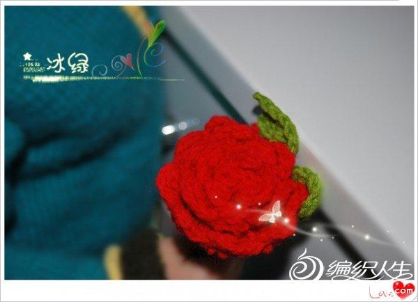 DSC_2154_副本.jpg
