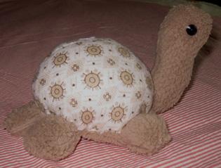 绒胫乌龟侧面.jpg