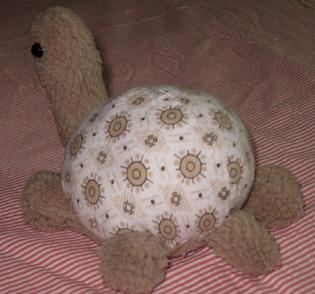 绒胫乌龟后面.jpg