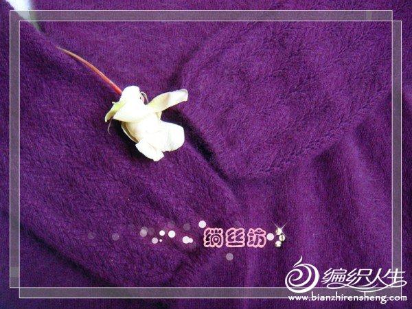 DSC00738_副本.jpg