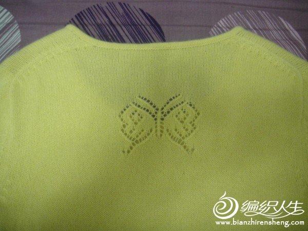 蝴蝶5.JPG