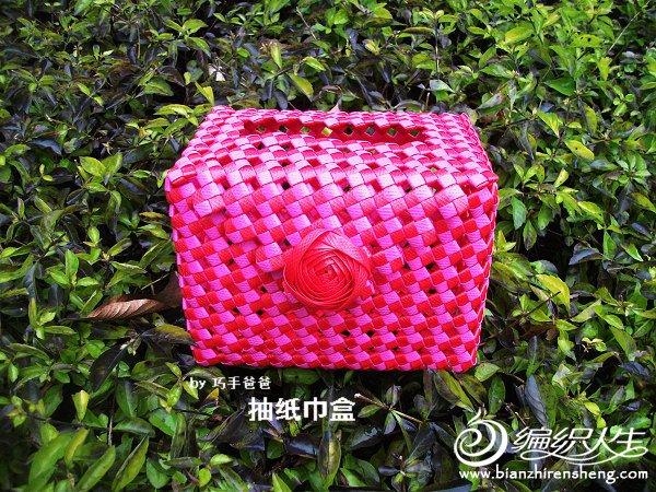 红粉磁扣抽纸巾盒 (1).JPG