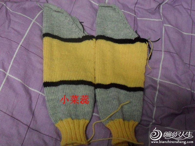 SDC11515_副本.jpg