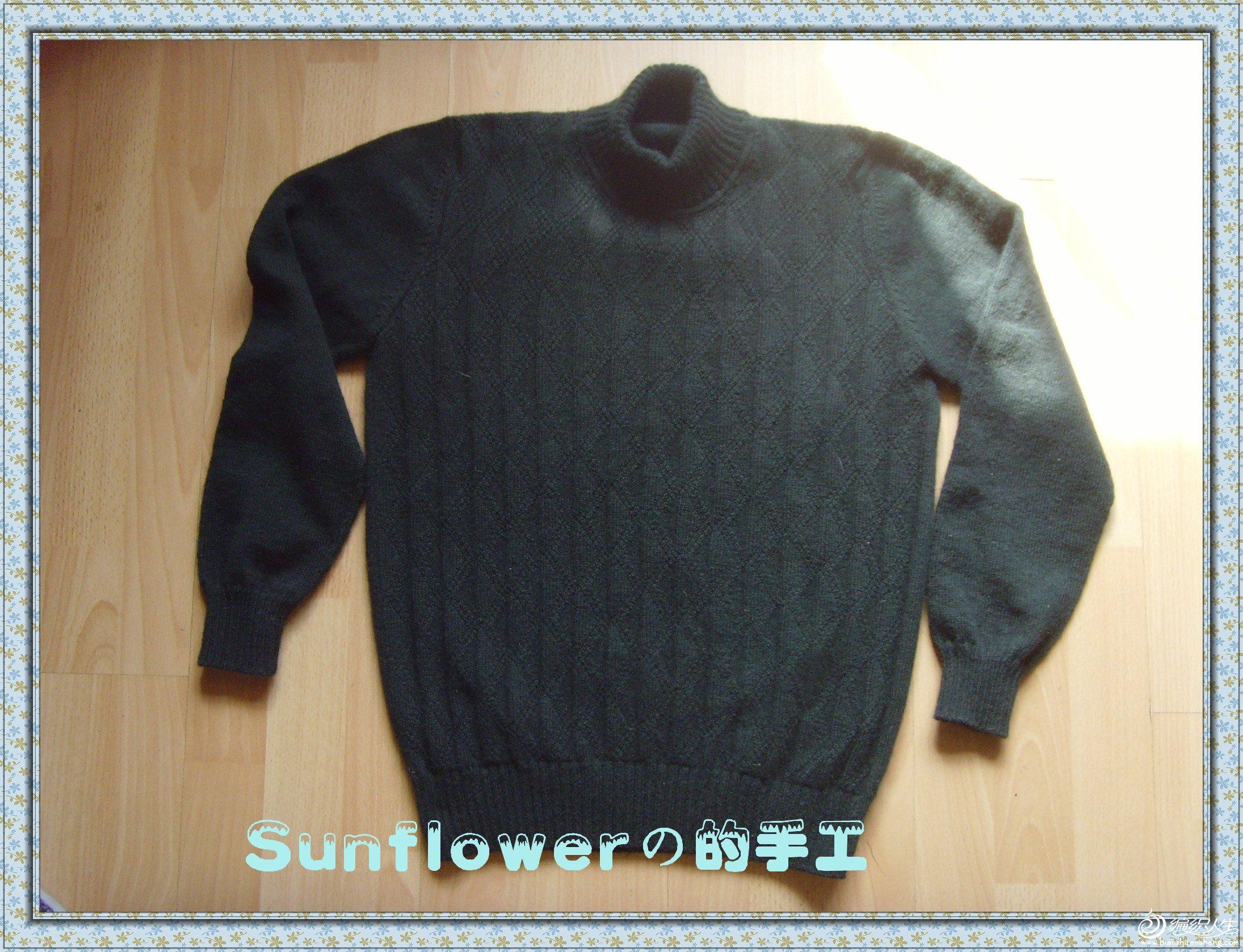 SNV33036_副本.jpg