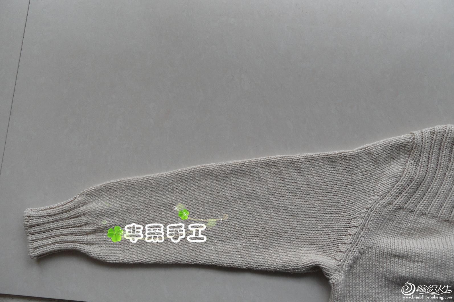 SAM_1176_副本.jpg
