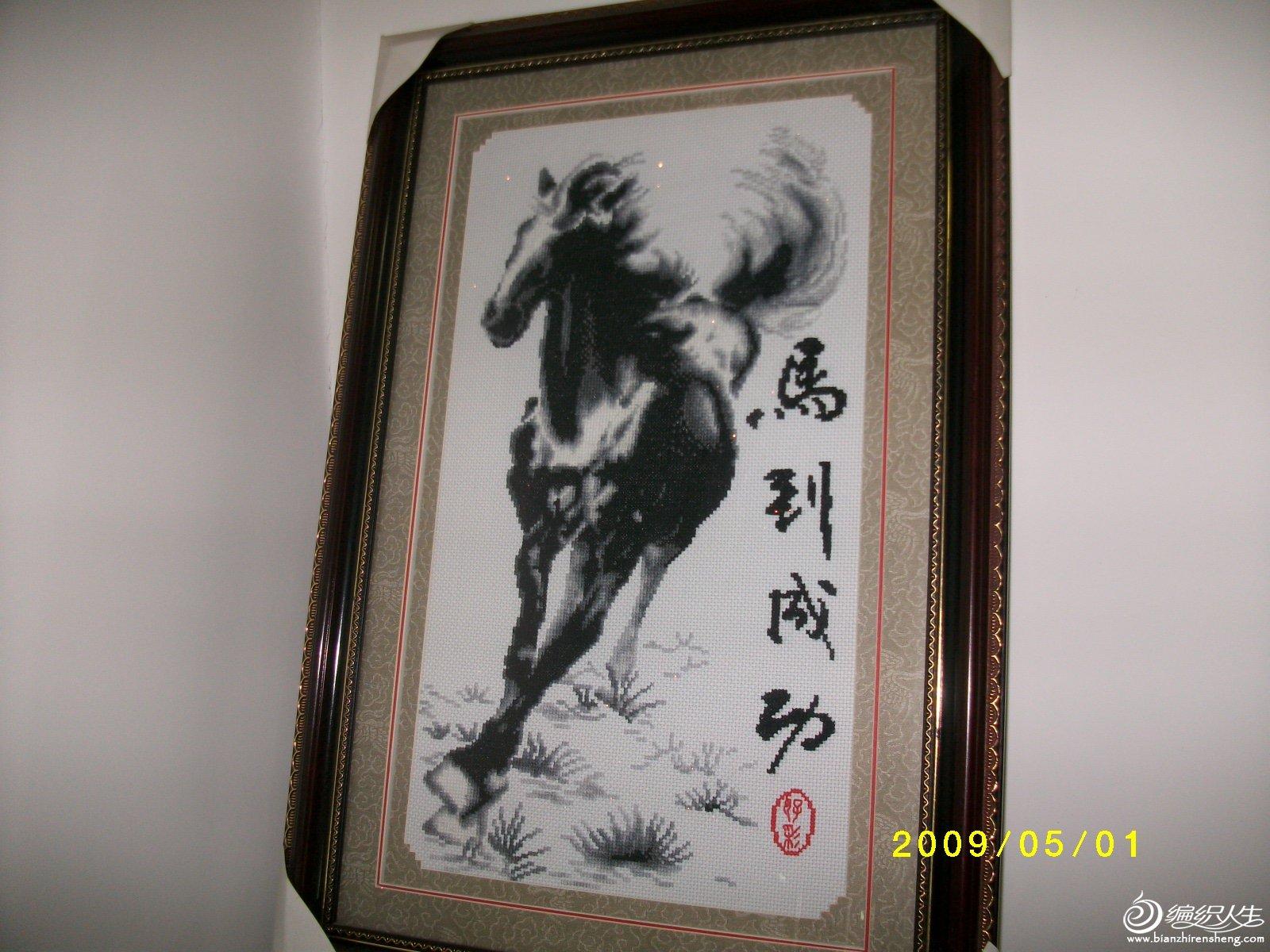 奔跑的黑马
