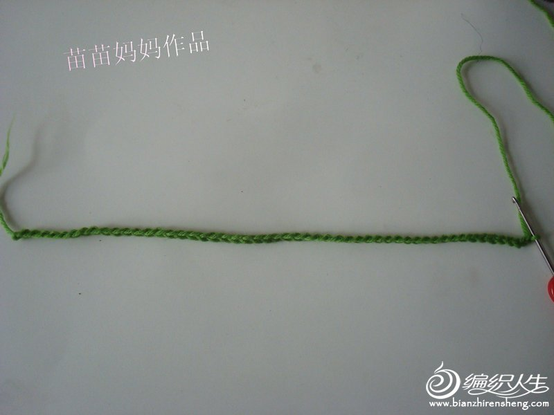 DSC07775.JPG