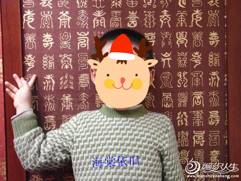 侄子的套色毛衣.jpg