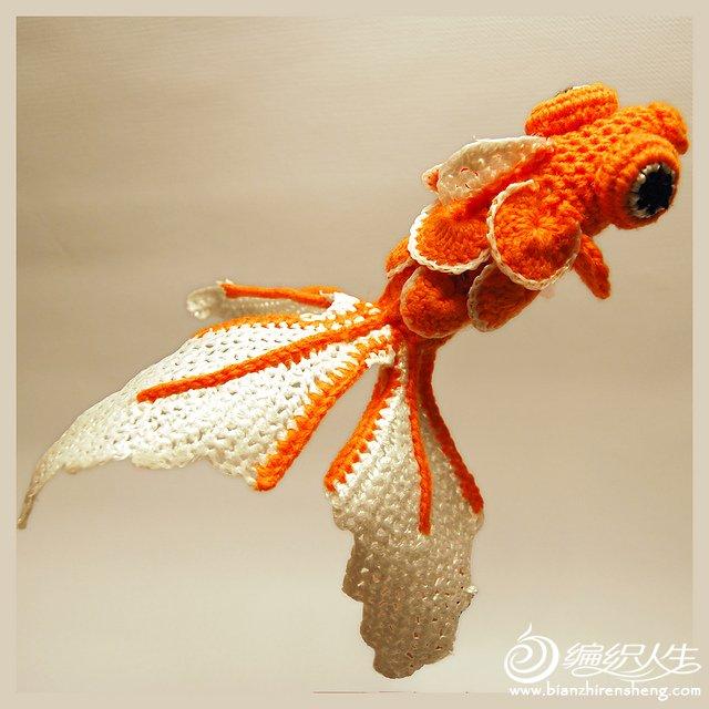 20g fish.jpg