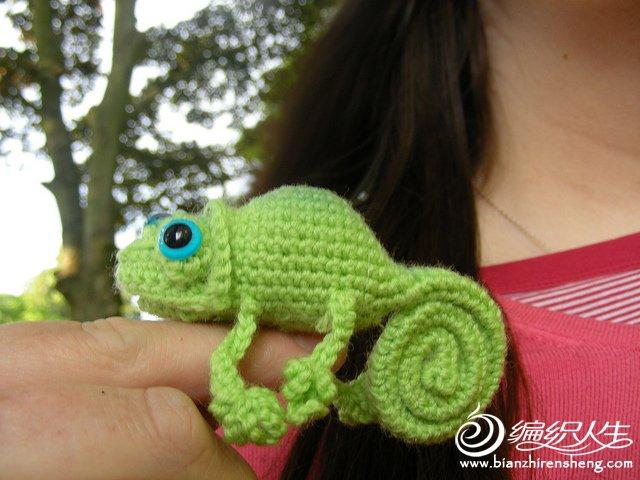 Cute Chameleon.jpg
