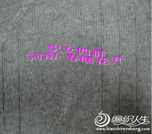 河南-春暖花开3.JPG
