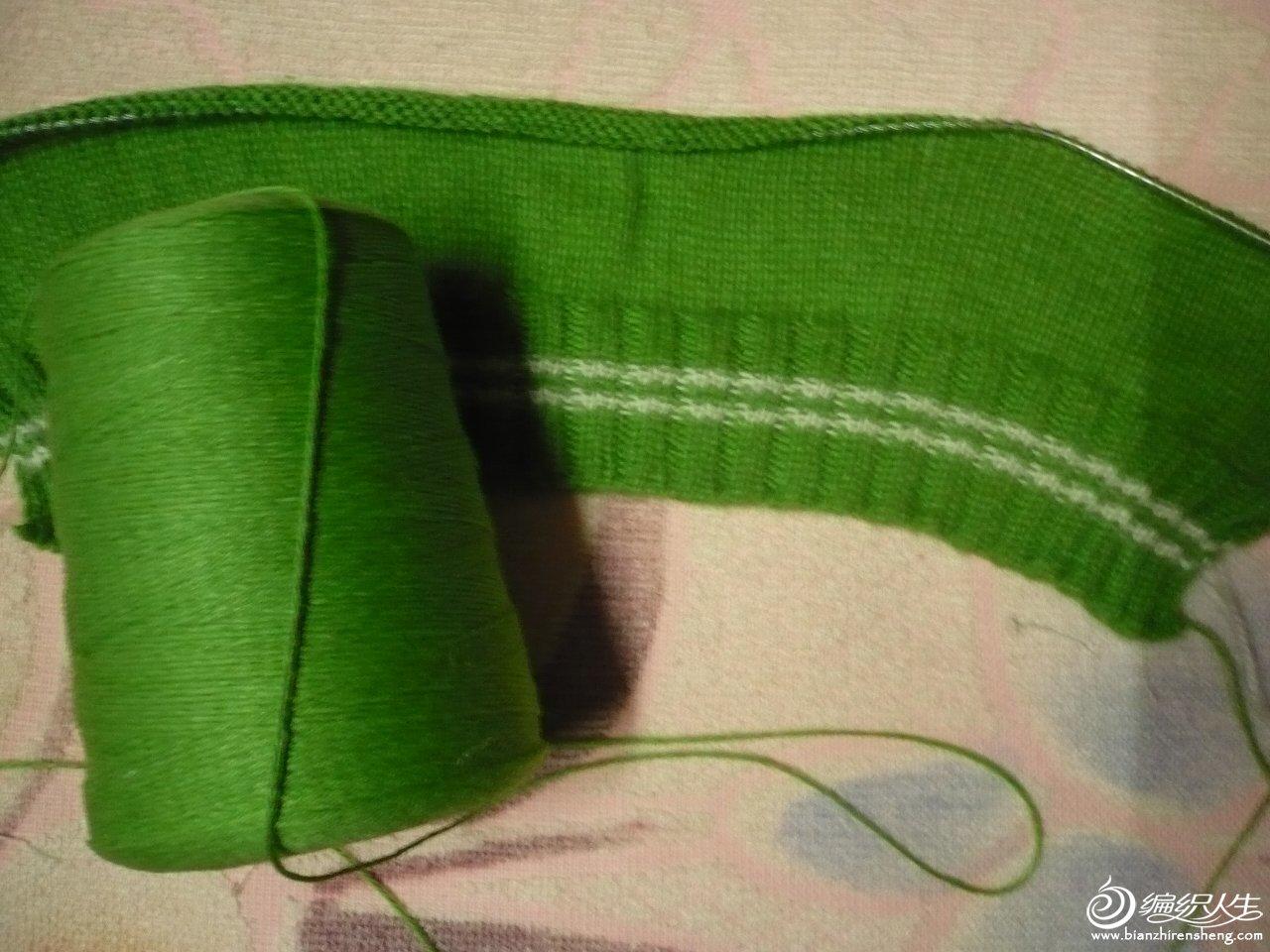 绿衣线.JPG