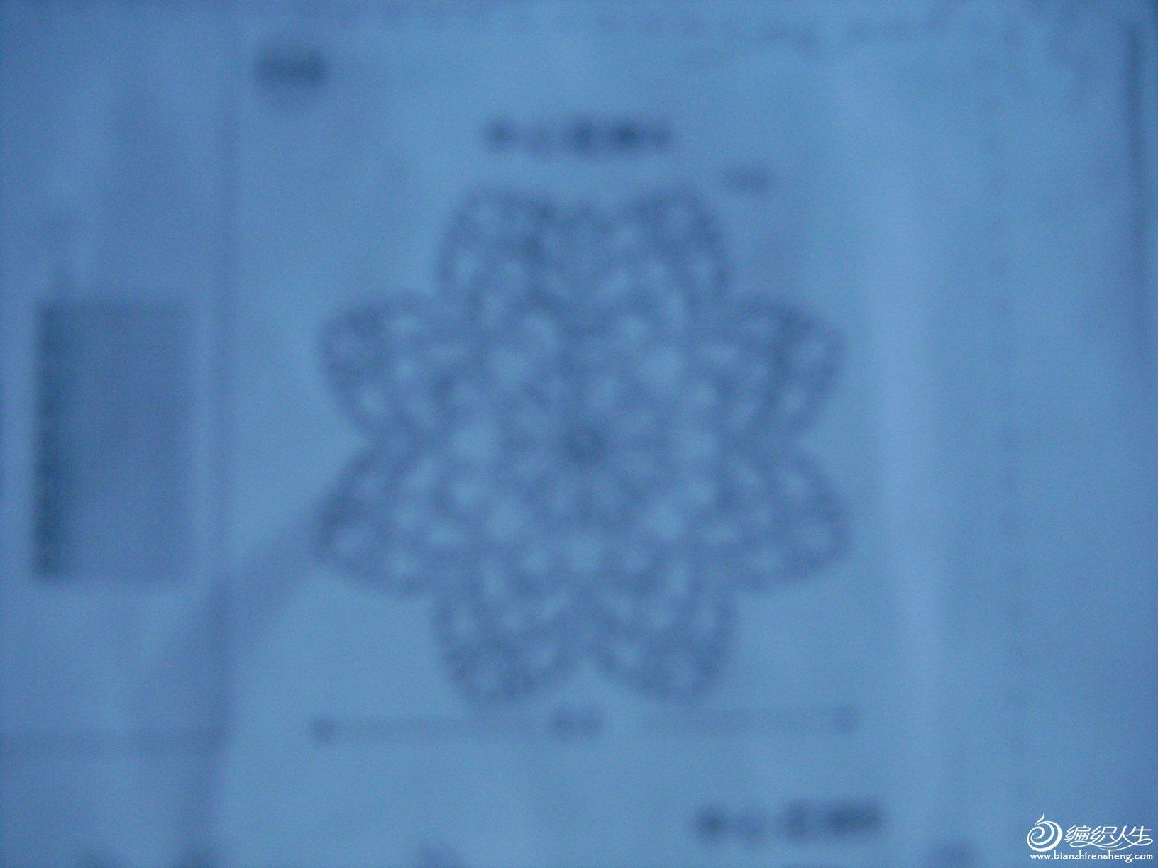 DSC01386.JPG