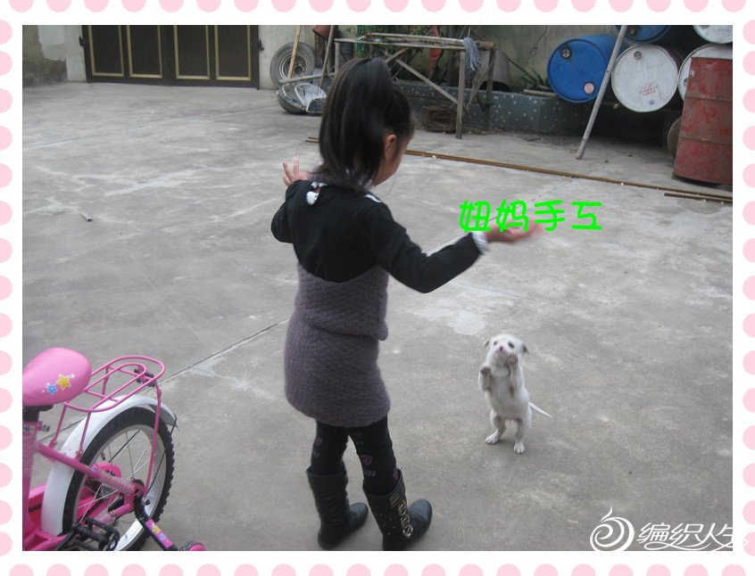 照片 013_副本.jpg