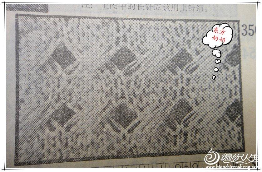 DSC03557_副本.jpg