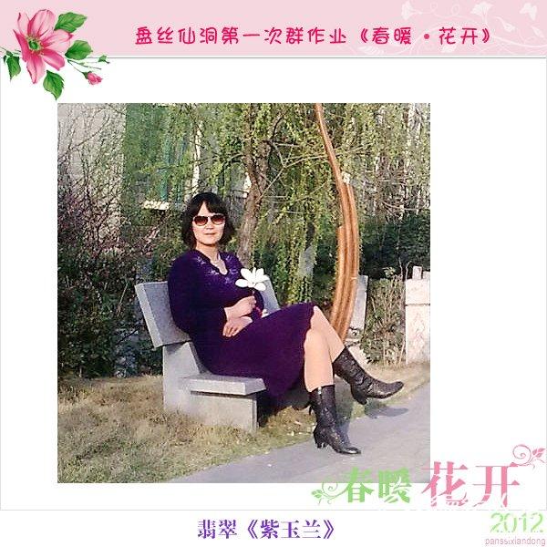 翡翠-紫玉兰2.jpg