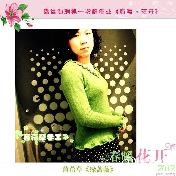 苜蓿草-绿蔷薇2.jpg