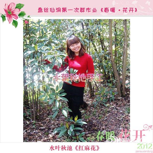 水叶秋池-红麻花2.jpg