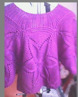 紫色梦幻4.jpg