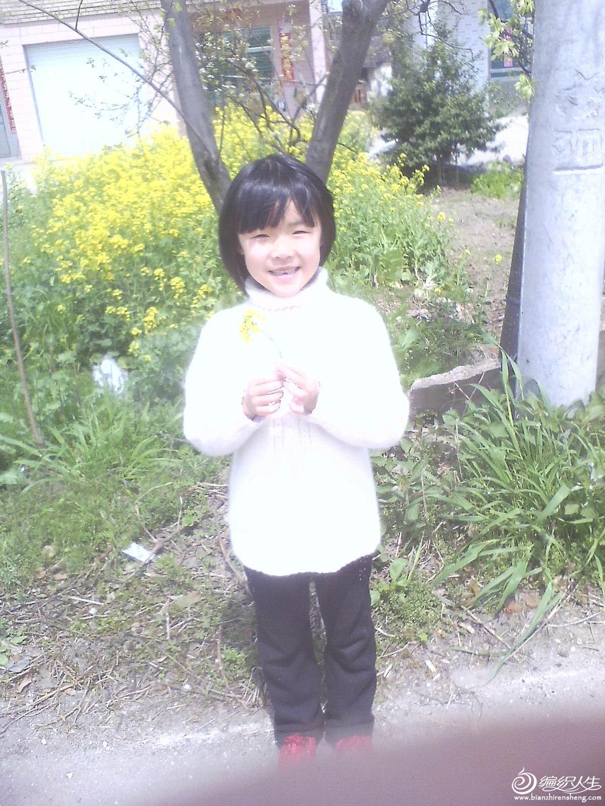 朵朵白毛衣.jpg