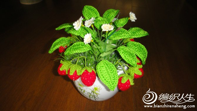 草莓盆景(2)