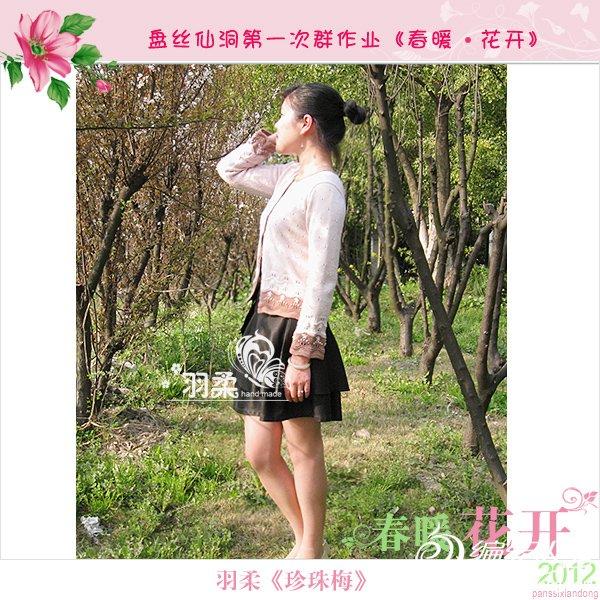 羽柔-珍珠梅2.jpg