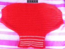 红蝙蝠衫1.JPG