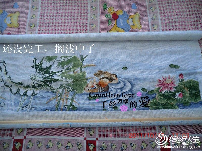 CIMG6192_副本.jpg