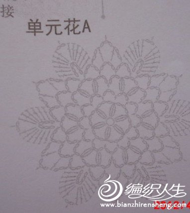 郑州青藤3.jpg