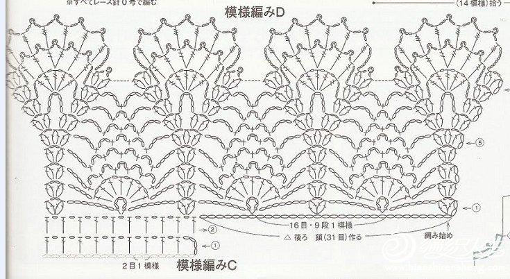 凤尾花.jpg