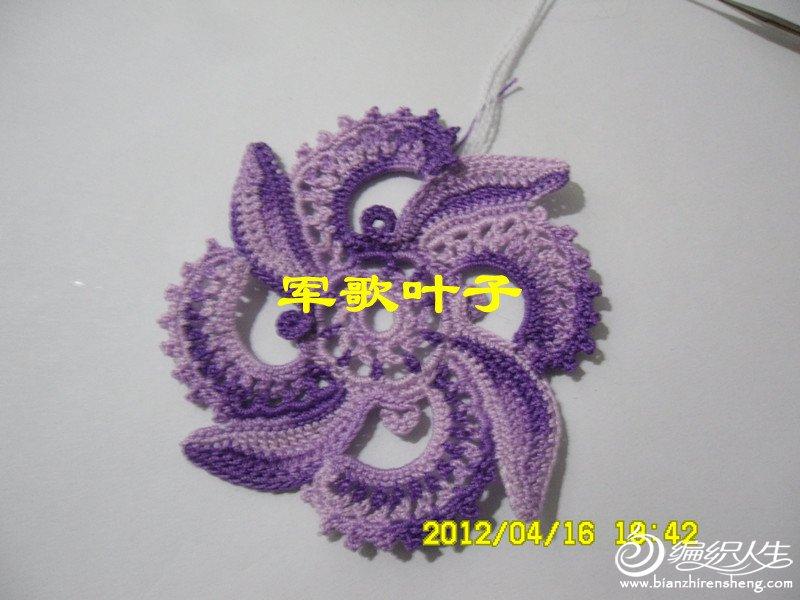 SAM_8437_副本.jpg