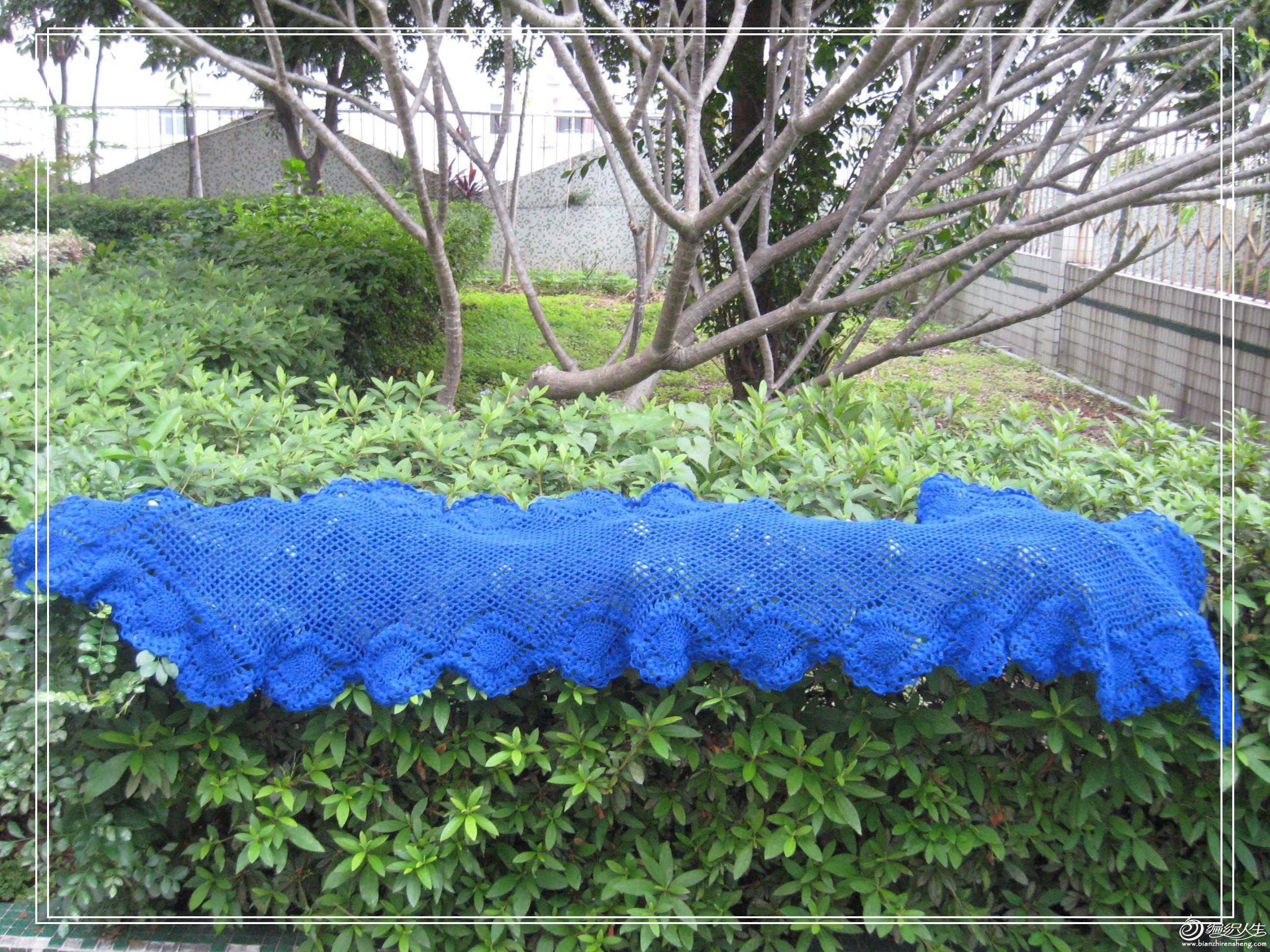 蓝菠萝披肩2.jpg