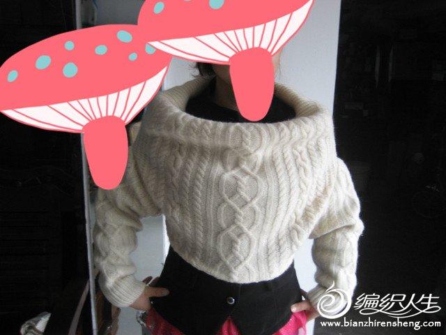 自己编织的羊绒衣 298_副本.jpg