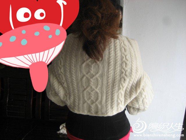 自己编织的羊绒衣 299_副本.jpg