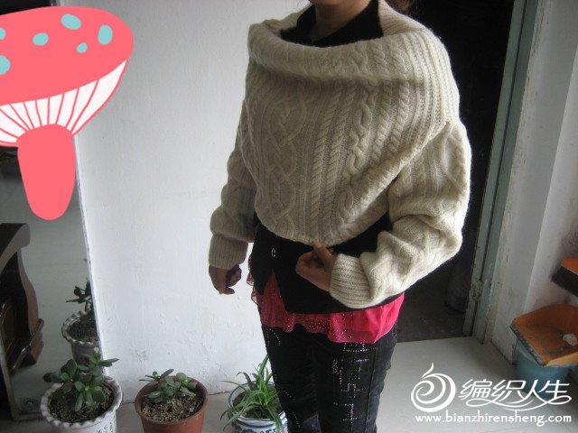 自己编织的羊绒衣 307_副本.jpg