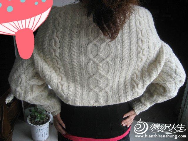 自己编织的羊绒衣 308_副本.jpg